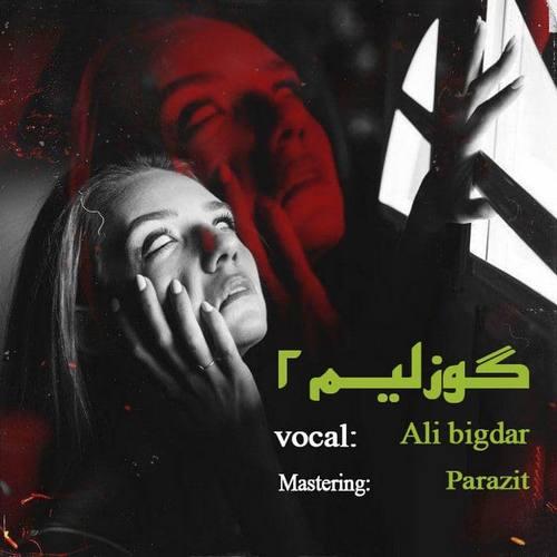 دانلود موزیک علی بیگ دارک گوزلیم ۲